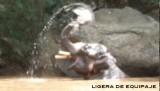 elefanteagua4