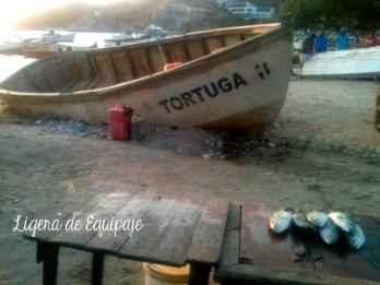 Pescadores Taganga3