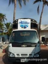 Tortugas Camion Mundo Marino
