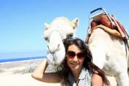 YO Camello